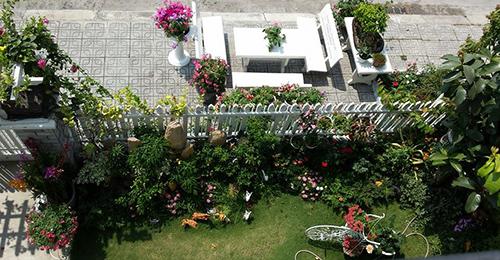 Ngắm vườn hoa tuyệt đẹp của nữ giảng viên ở TPHCM - 16