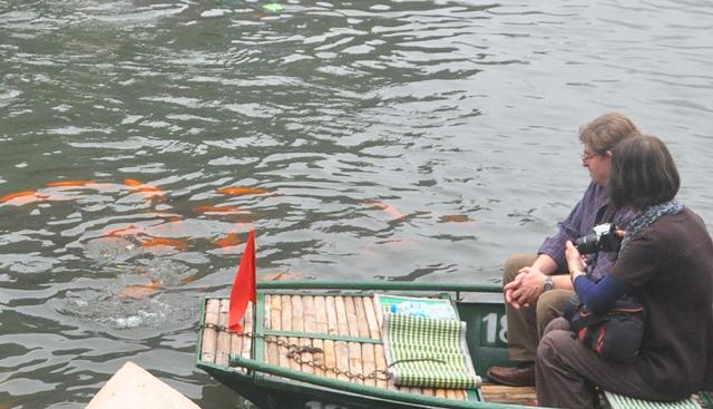 Du khách thích thú ngắm cá chép đỏ lạ ở Tràng An - 7