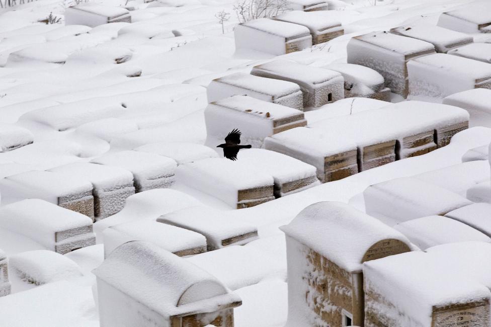 """Hiện tượng lạ: Tuyết phủ trắng """"sa mạc"""" Trung Đông - 11"""