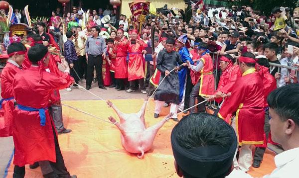 Ảnh: Dân Ném Thượng chém lợn giữa sân đình - 16