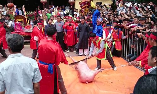 Ảnh: Dân Ném Thượng chém lợn giữa sân đình - 1