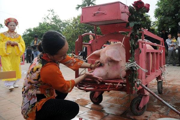 Ảnh: Dân Ném Thượng chém lợn giữa sân đình - 4