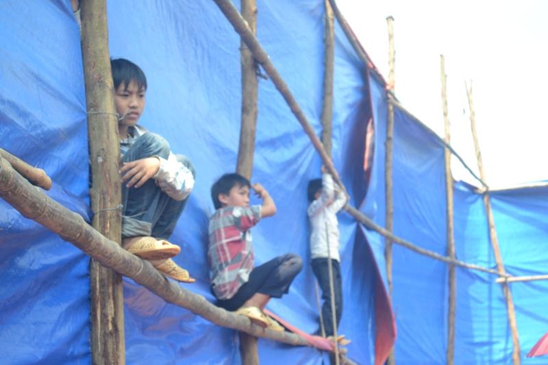 Clip: Chọi trâu kịch tính, nảy lửa tại Hà Giang - 7