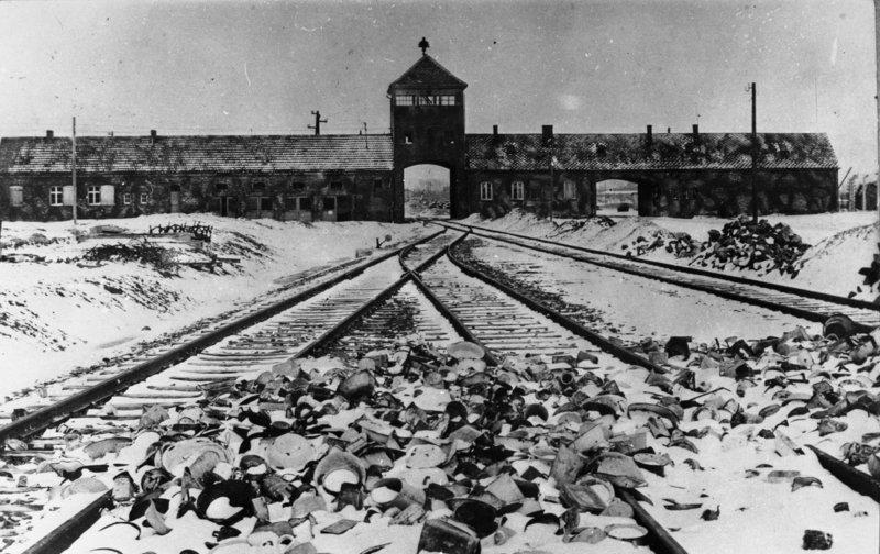 """Đức sắp tái bản """"sách hướng dẫn diệt chủng"""" của Hitler - 2"""