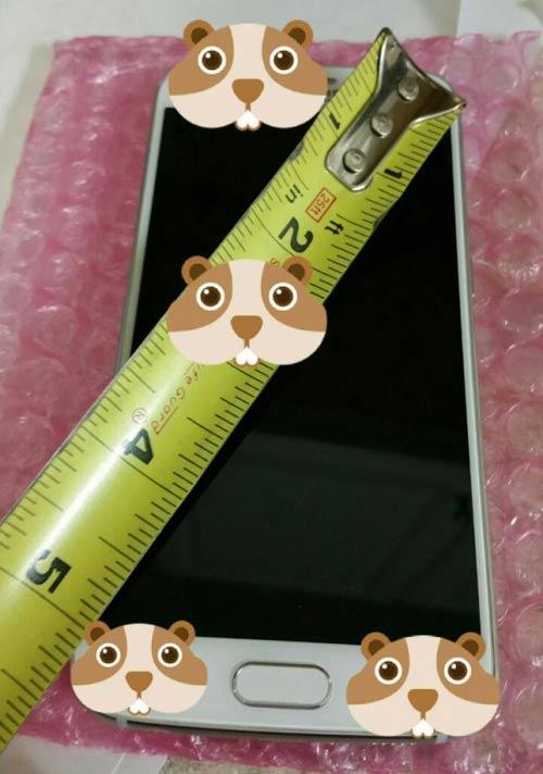 Galaxy S6 và S6 Edge lộ ảnh thực tế - 4