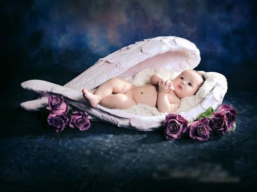 Clip hậu trường chụp ảnh trẻ sơ sinh siêu đáng yêu - 3
