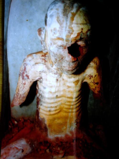 Những trường hợp xác ướp trong tượng ở Việt Nam - 3
