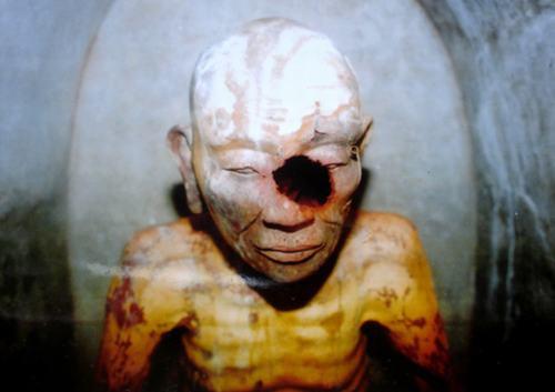 Những trường hợp xác ướp trong tượng ở Việt Nam - 5