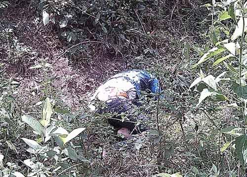Phát hiện thi thể nữ sinh bị phân hủy trong rừng - 3