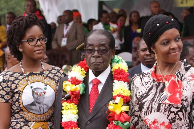 Zimbabwe xẻ thịt voi rừng mừng tổng thống 91 tuổi - 1