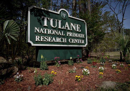 Mỹ: Phòng thí nghiệm để lọt vi khuẩn chết người ra ngoài - 1
