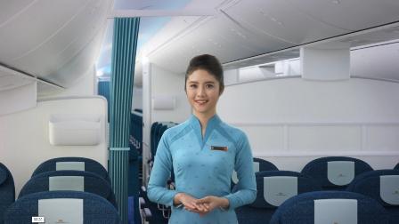Trang phục mới của Vietnam Airlines chỉ đang thử nghiệm - 4
