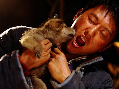 """Khám phá đoàn phim """"sống chung"""" với 35 chú sói - 9"""