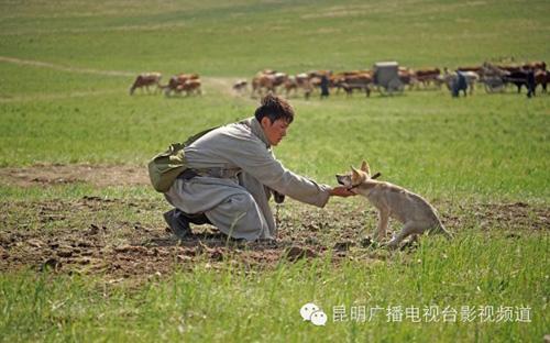 """Khám phá đoàn phim """"sống chung"""" với 35 chú sói - 7"""