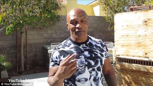 Mike Tyson mách nước Mayweather hạ Pacquiao - 1