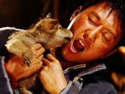 """Khám phá đoàn phim """"sống chung"""" với 35 chú sói"""