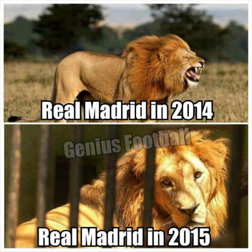 Fan Barca hả hê, giễu cợt Real thua trận - 1