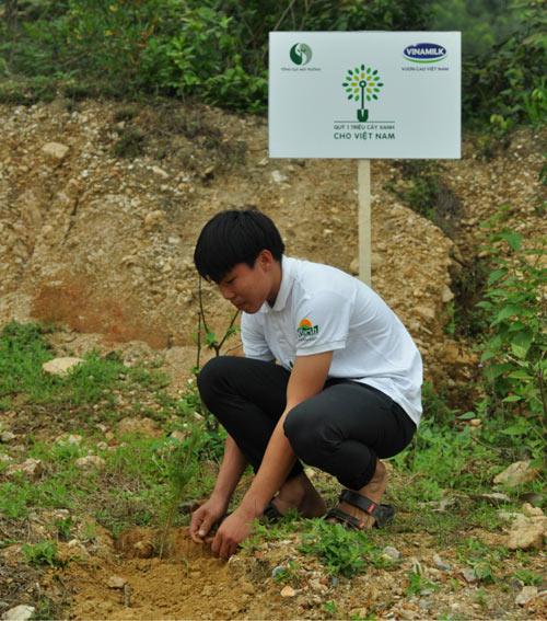 Trồng hơn 13.000 cây xanh tại khu mộ Đại tướng Võ Nguyên Giáp - 5