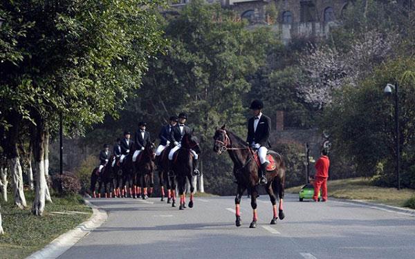 Màn rước dâu bằng đàn ngựa gây náo loạn phố phường - 3