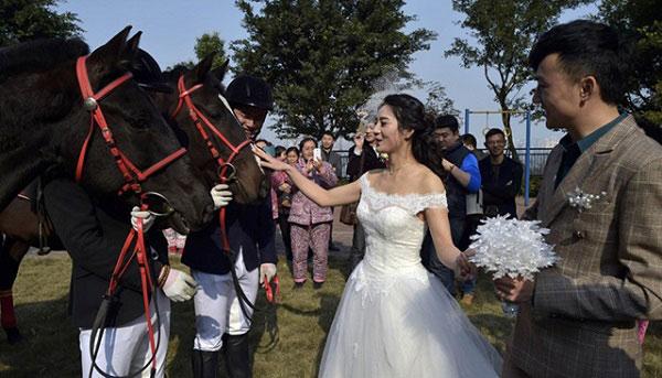 Màn rước dâu bằng đàn ngựa gây náo loạn phố phường - 9