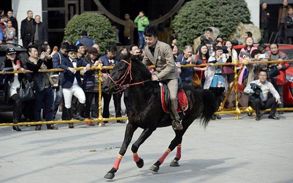 Màn rước dâu bằng đàn ngựa gây náo loạn phố phường - 10