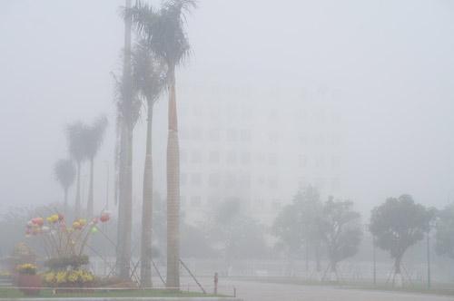 Quảng Nam: Sương mù phủ trắng thành phố Tam Kỳ - 11
