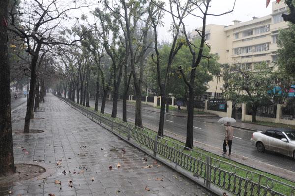 Dân Thủ đô khổ sở vì mưa phùn, nồm ẩm - 15