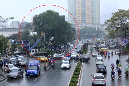 HN: Chặt hàng loạt cây xanh trên đường Nguyễn Chí Thanh - 2