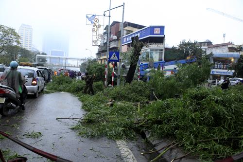 HN: Chặt hàng loạt cây xanh trên đường Nguyễn Chí Thanh - 5
