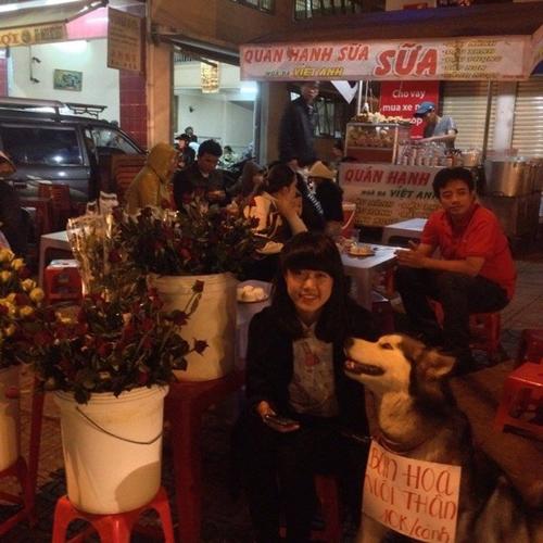 Chú chó đeo biển ''bán hoa nuôi thân'' gây sốt - 5