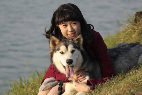 Chú chó đeo biển ''bán hoa nuôi thân'' gây sốt - 6