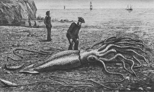 Những bí ẩn kỳ lạ nhất trong lòng đại dương (P1) - 4
