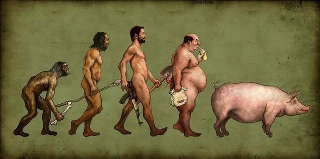So sánh đàn ông và (xin lỗi)... con heo - 1