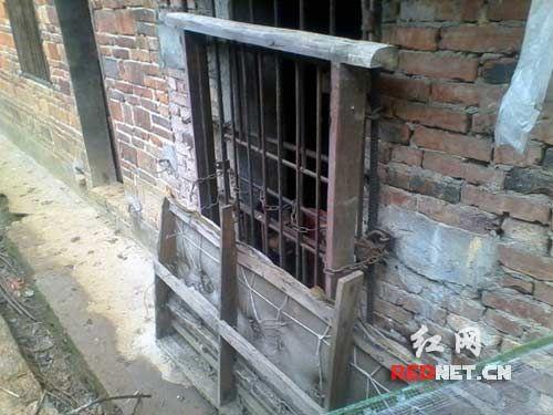 Trung Quốc: Mẹ nhốt con trong chuồng gà suốt 13 năm - 2