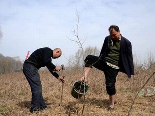 Hai cụ ông khuyết tật dành 10 năm trồng hơn 10.000 cây xanh - 3