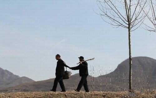 Hai cụ ông khuyết tật dành 10 năm trồng hơn 10.000 cây xanh - 1