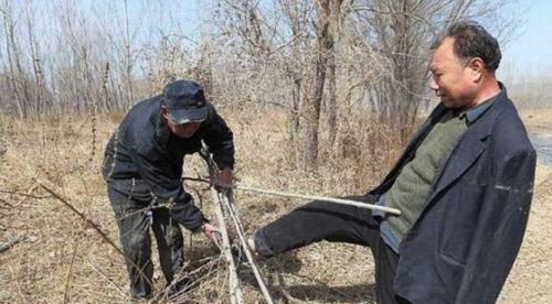 Hai cụ ông khuyết tật dành 10 năm trồng hơn 10.000 cây xanh - 2