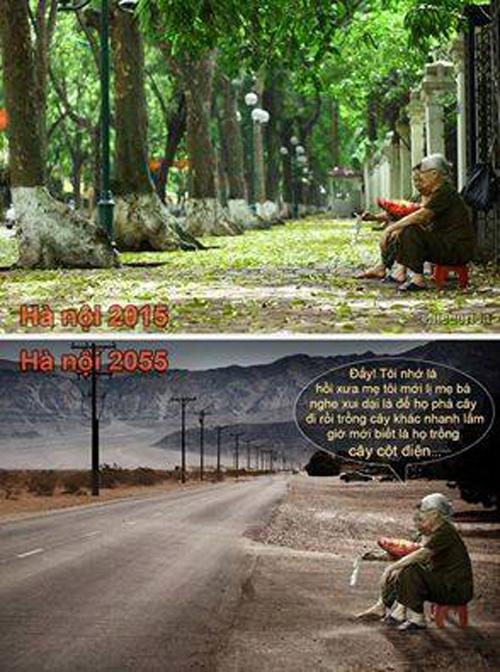 Những hình ảnh chế về chặt cây đáng suy ngẫm - 2