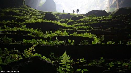 """""""Choáng"""" với cảnh quan hang Sơn Đoòng nhìn từ fly-cam - 6"""