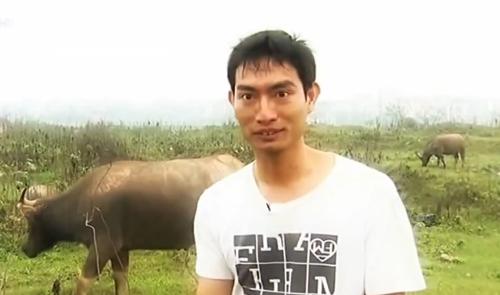Chàng trai nuôi đàn trâu hơn tỷ đồng giữa phố - 1