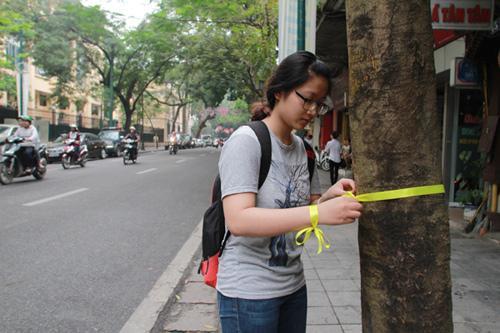 Giới trẻ Hà Thành thắt nơ bảo vệ cây trên phố - 2
