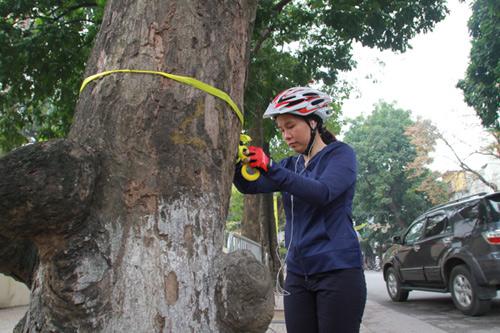 Giới trẻ Hà Thành thắt nơ bảo vệ cây trên phố - 5