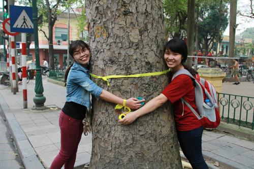 Giới trẻ Hà Thành thắt nơ bảo vệ cây trên phố - 8