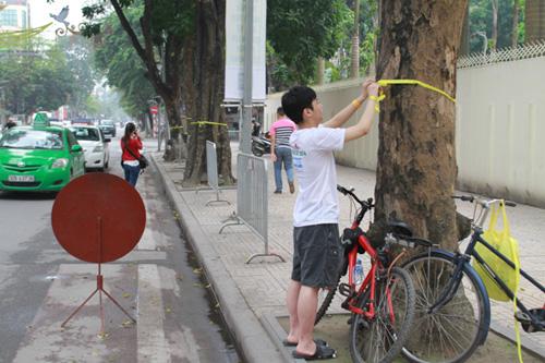 Giới trẻ Hà Thành thắt nơ bảo vệ cây trên phố - 6