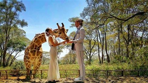 """Đám cưới vòng quanh thế giới của cặp đôi thích """"nhào lộn"""" - 6"""