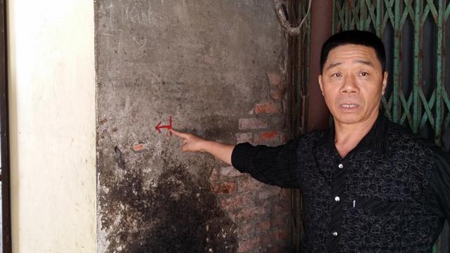 Hàng chục cây xanh nhiều năm tuổi ở Hạ Long bị đốn hạ - 10
