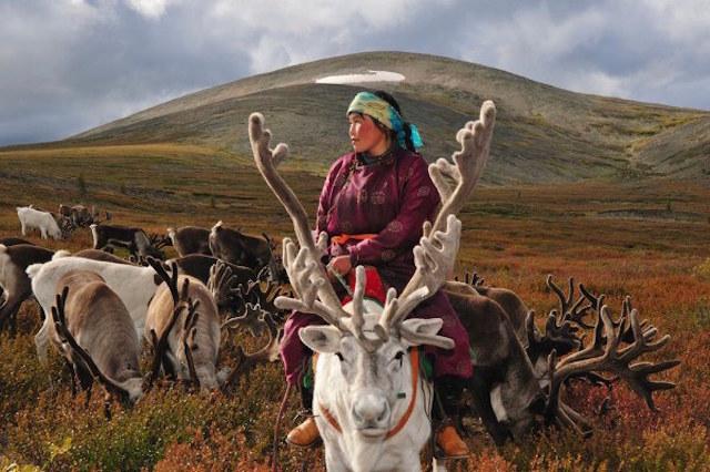 Sau nửa thập kỷ sinh sống ở Nepal, khám phá khu vực Tây Tạng và dãy Himalaya, nhiếp ảnh gia Hamid Sardar-Afkhami đã lên đường tới Mông Cổ để tìm hiểu về cuộc sống độc đáo của người dân các bộ lạc ở đất nước này.