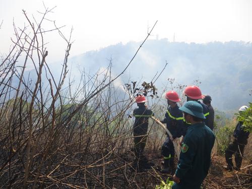 Gia Lai: Cháy lớn, thiêu rụi 3ha rừng trên núi Hàm Rồng - 2