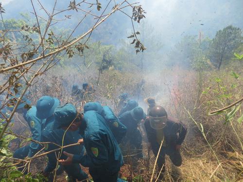 Gia Lai: Cháy lớn, thiêu rụi 3ha rừng trên núi Hàm Rồng - 1