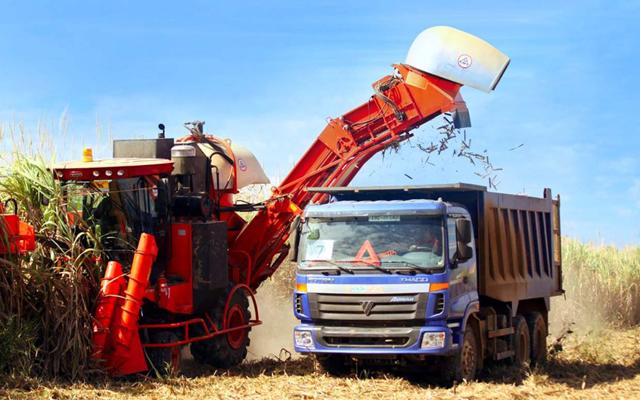 Nhiều DN lớn đầu tư vào nông nghiệp: Miếng bánh ngon và bổ! - 1